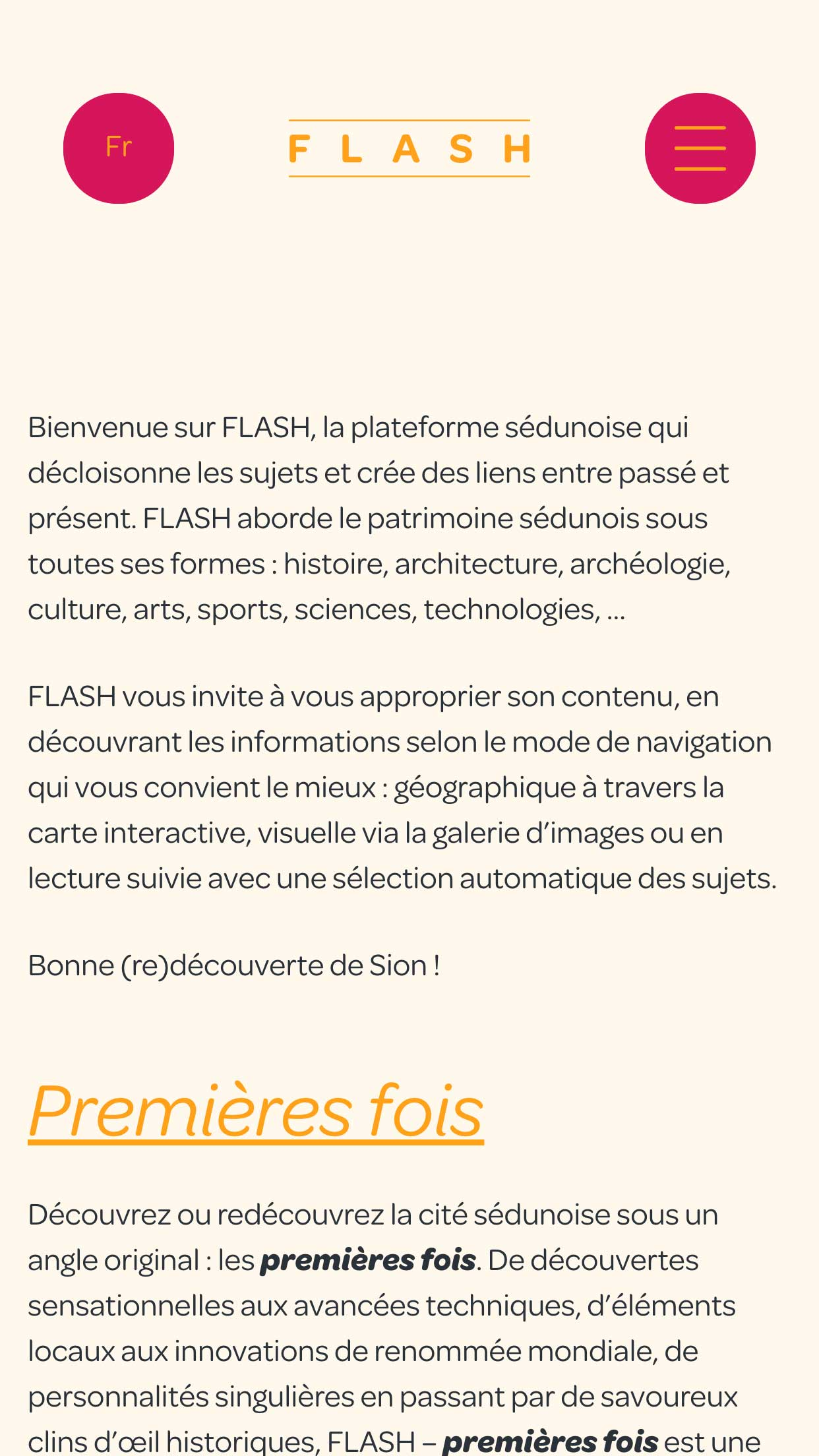 Flash page d'acceuil